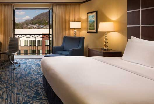 Best Hotels in Asheville NC Hilton Biltmore Park