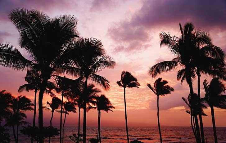Best-Hotels-in-Honolulu-Hawaii