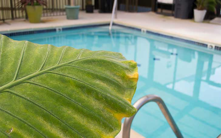 Best-Hotels-in-Rehoboth-Beach-Brighton-Inn