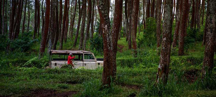 Best Things to Do in Indonesia -Off Roading Jeep Bandung