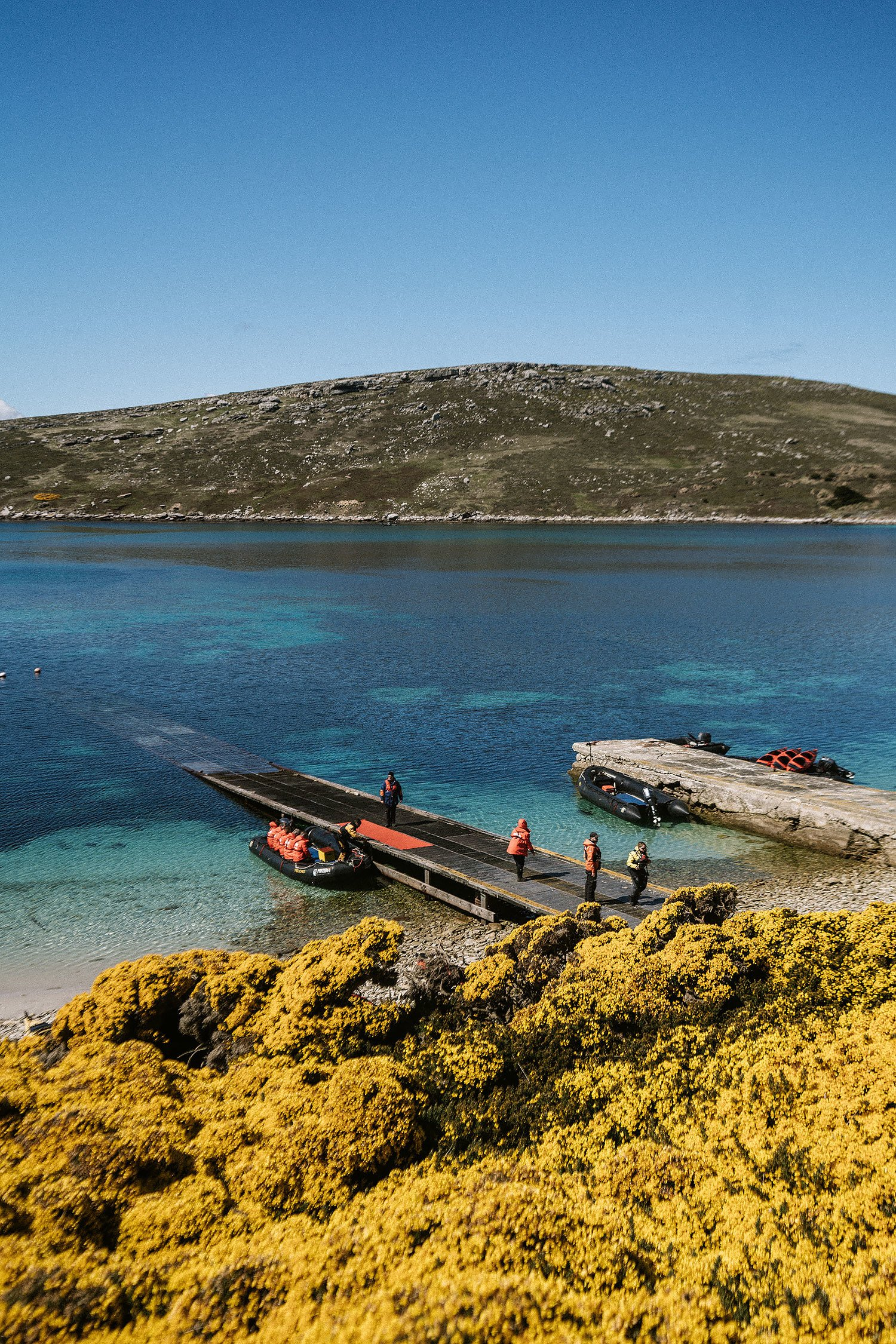 Falkland Islands Travel Guide
