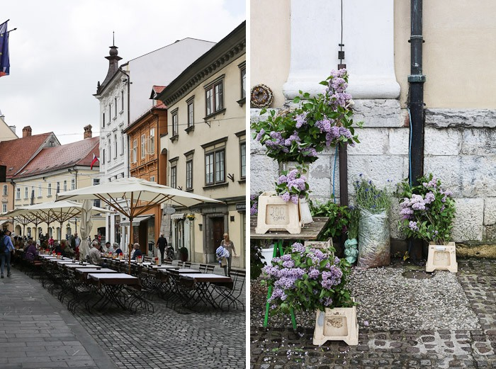 Eastern Europe Travel Tourist City Architecture Flower Lavender Street Cafe Lunch