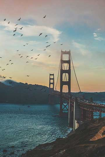best time to visit san francisco for affordable hotel