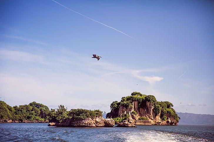 7 reasons to visit samana dominican republic los haitises national park