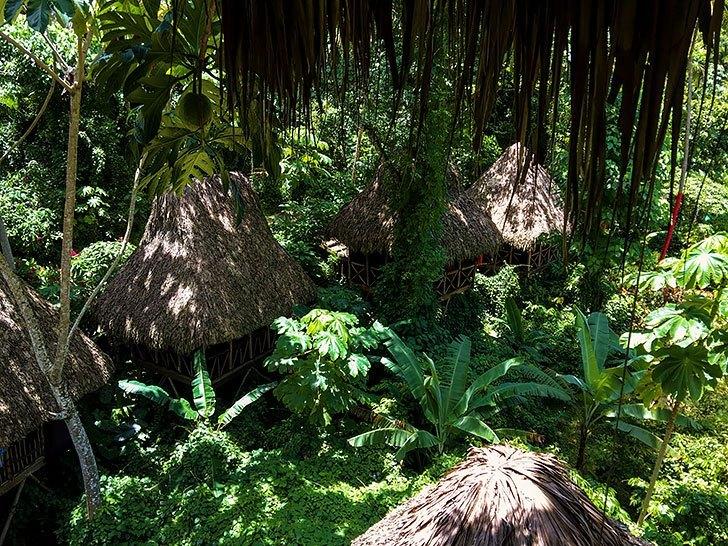7 reasons to visit samana dominican republic ziplining