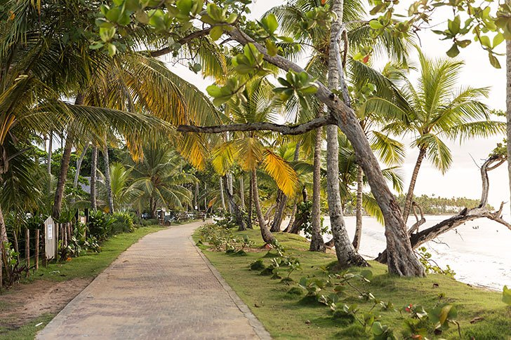 7 reasons to visit samana dominican republic las terrenas