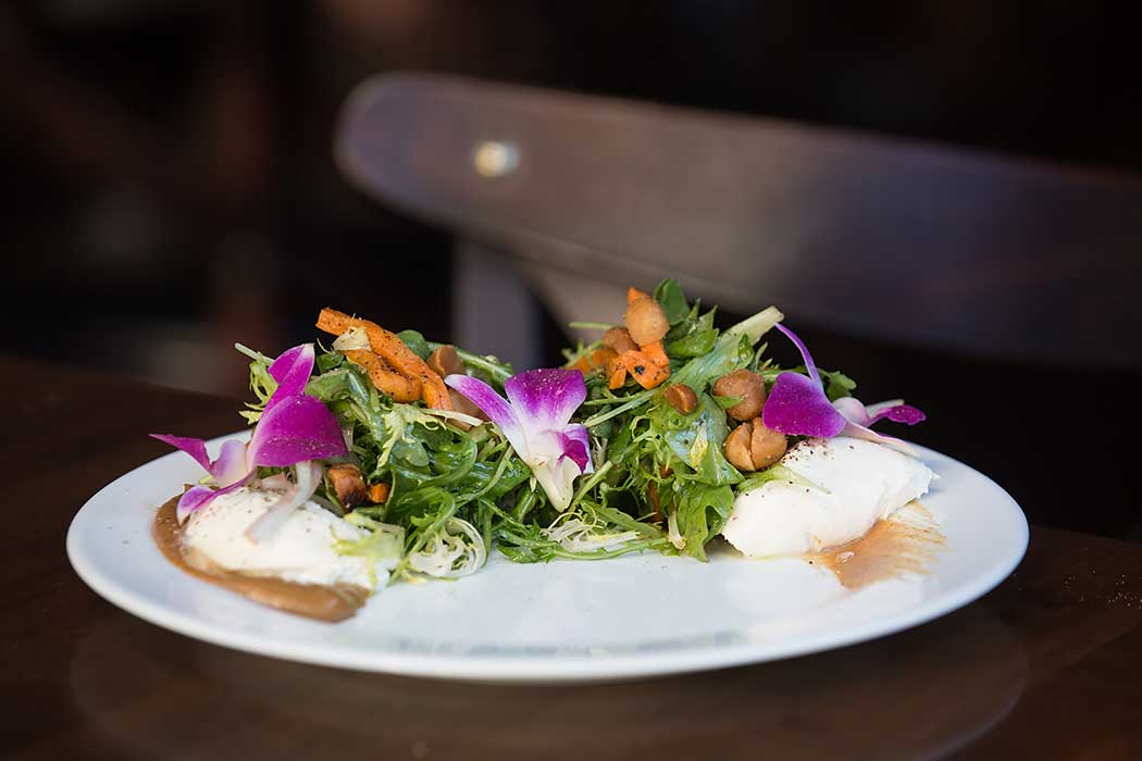 Sociale Brooklyn Heights Dinner Review Burrata Salad