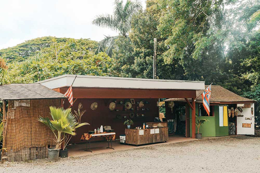 Tropical-Farms-Macadamia-Nuts-Oahu