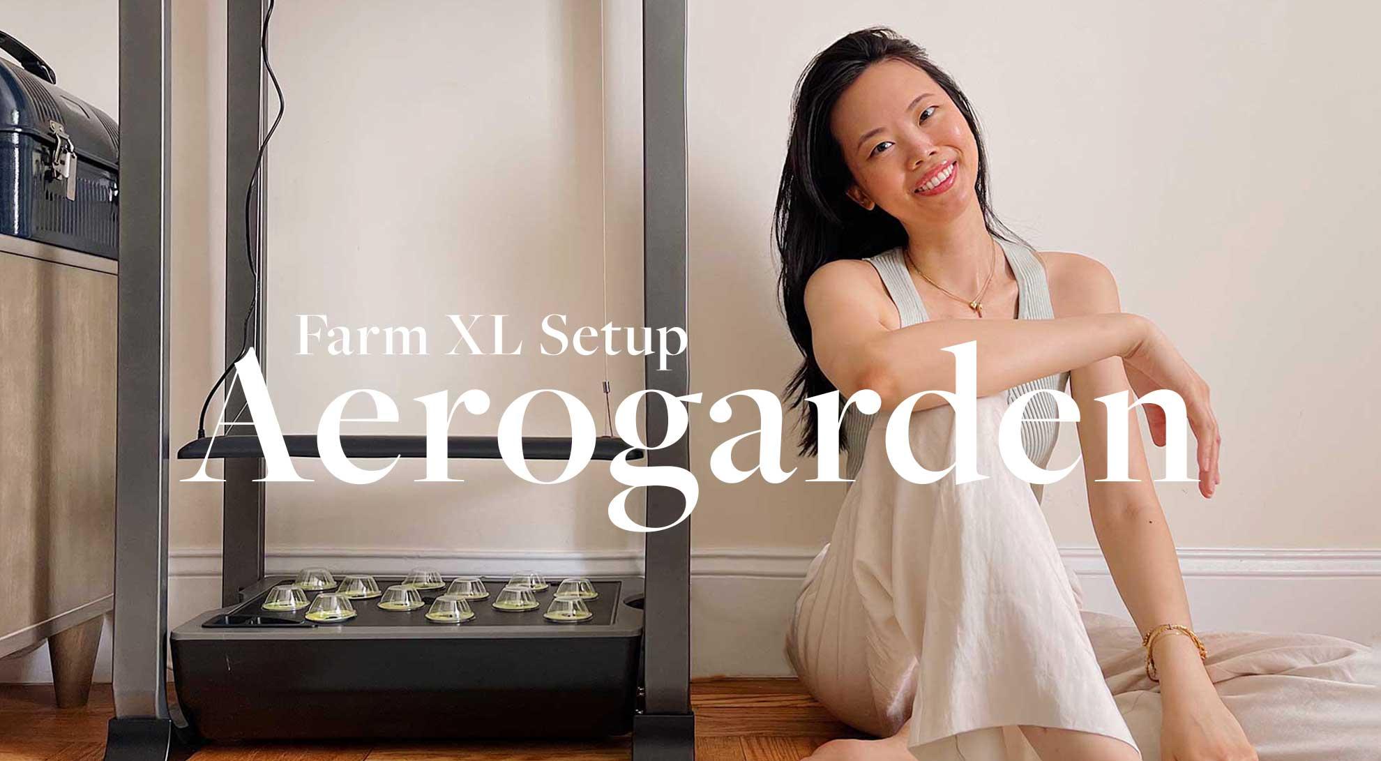 aerogarden-farm-12-xl-setup-with-tomatoes-+-review