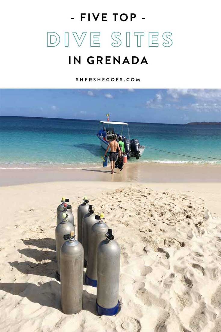 best-dive-sites-in-grenada