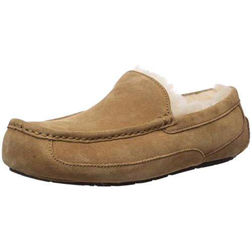 best mens ugg slippers