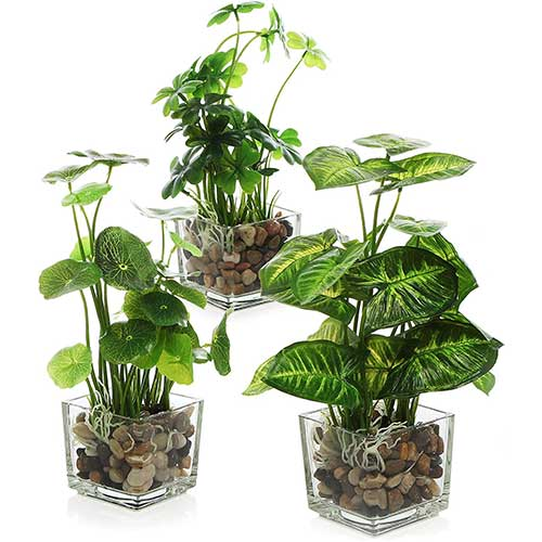 best place to find cheap faux plants