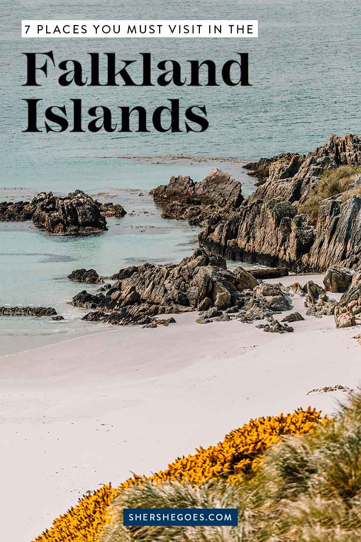 best-places-to-visit-in-the-falkland-islands