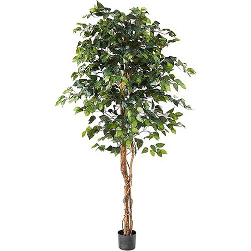 best tall faux plants