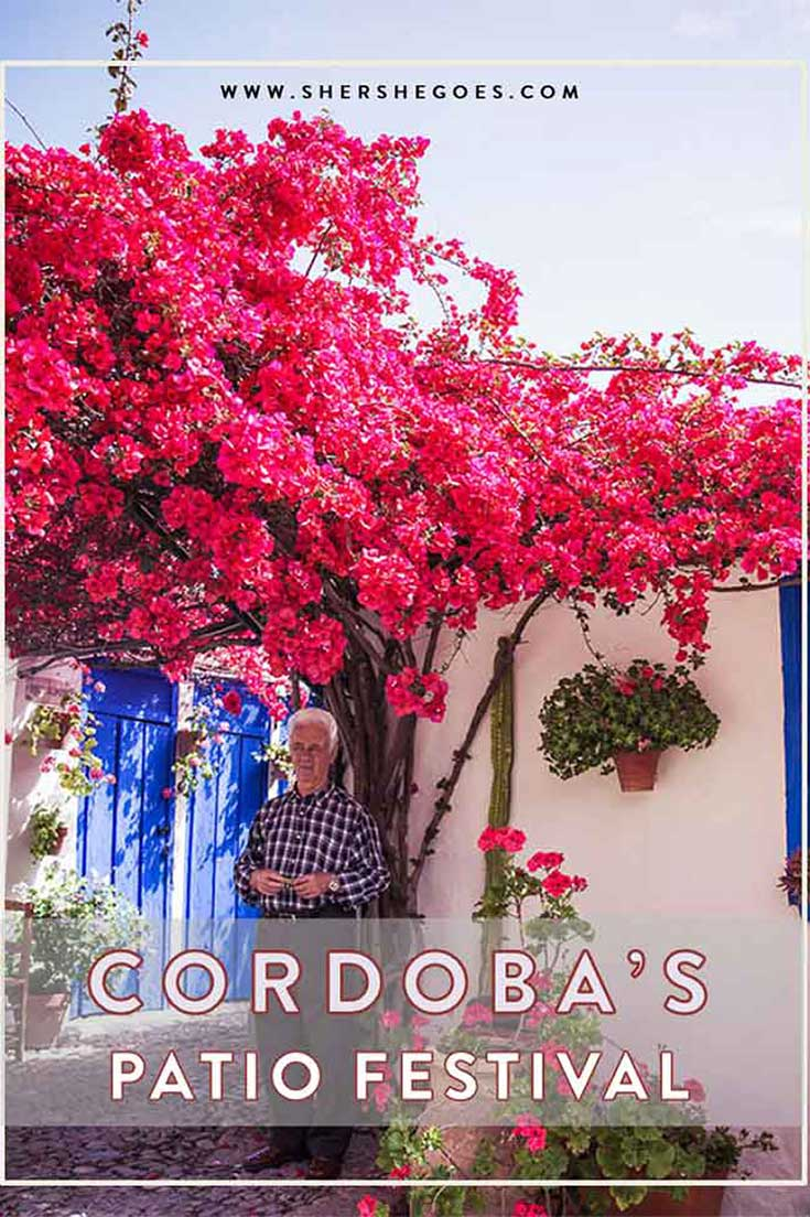 how-to-visit-the-cordoba-patio-festival