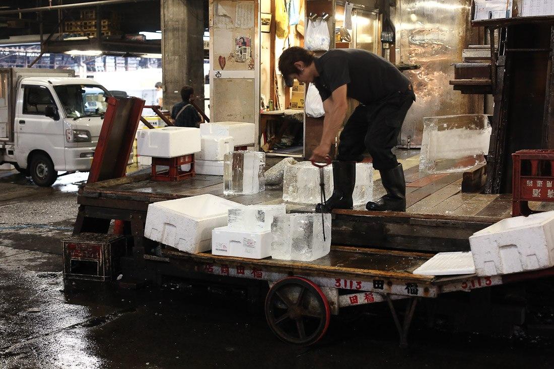 japan-tokyo-tsukiji-fish-market-tuna-octopus-shershegoes.com (11)