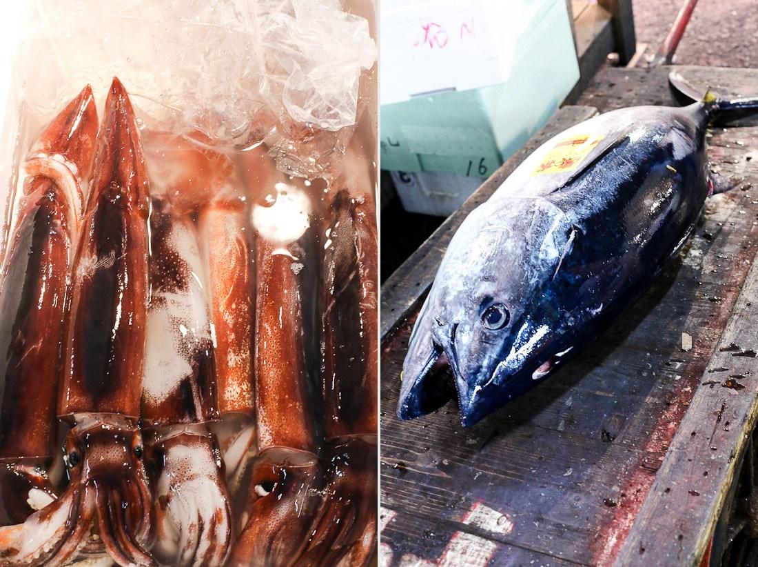 japan-tokyo-tsukiji-fish-market-tuna-octopus-shershegoes.com (13)