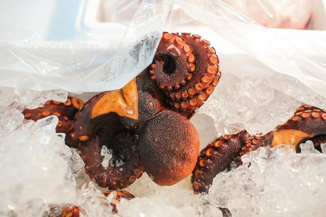 japan-tokyo-tsukiji-fish-market-tuna-octopus-shershegoes.com (6)