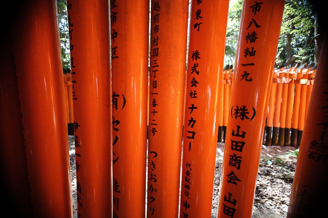 kyoto japan japanese travel fushimi inari shrine temple orange tori gate fox photo shershegoes.com10