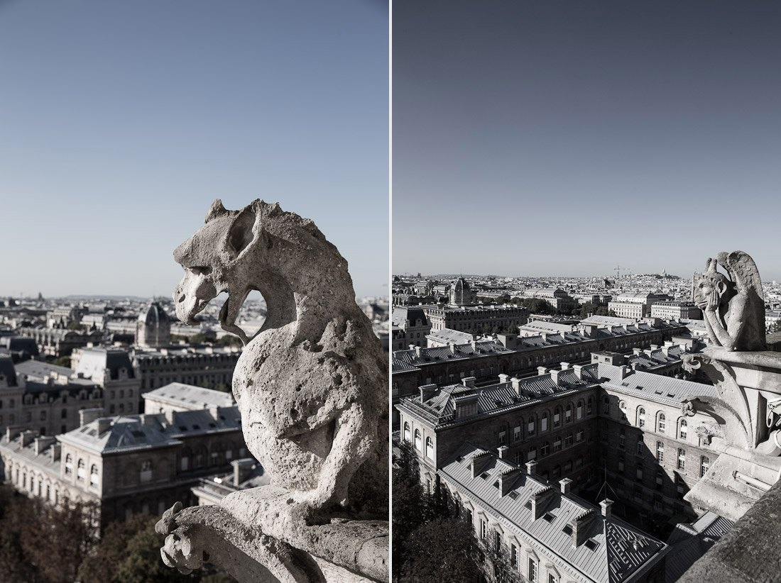 notre-dame-cathedral-church-roof-tours-stairs-tower-gargoyle-chimera-statue-paris-france-view-architecture-stone-photo-shershegoes.com (1)