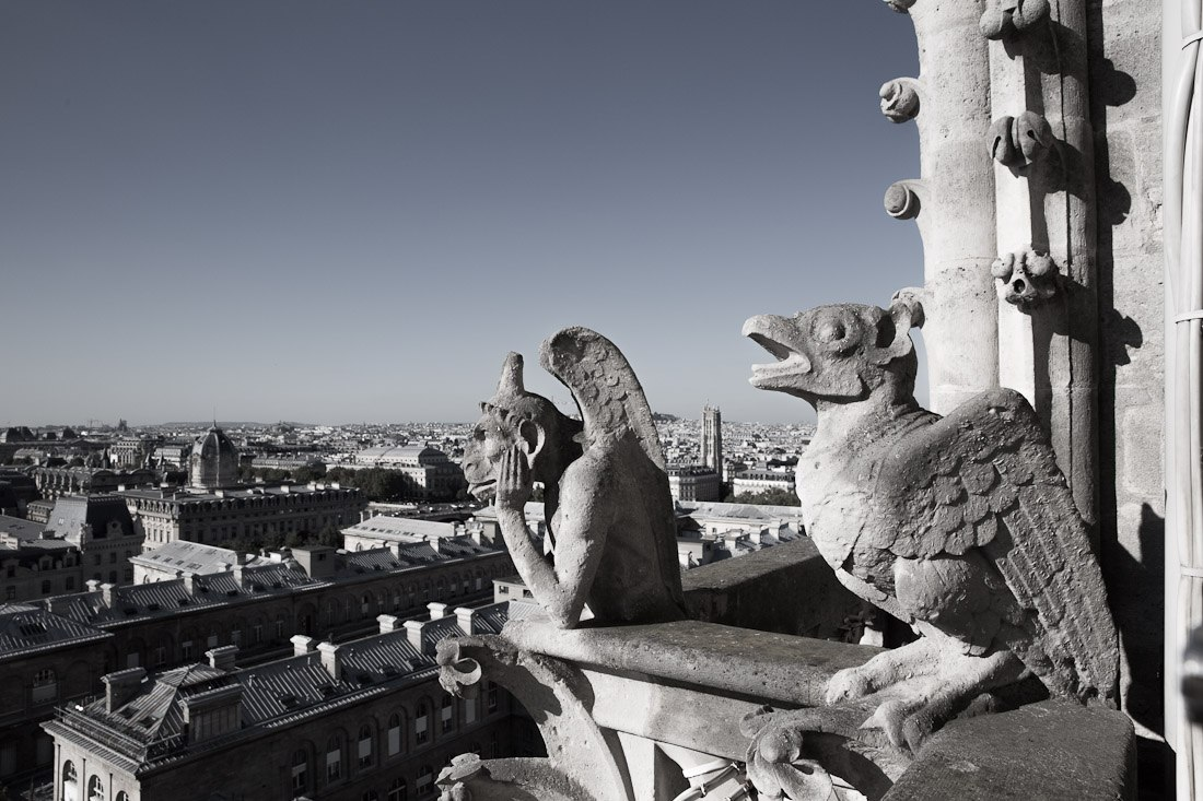 notre-dame-cathedral-church-roof-tours-stairs-tower-gargoyle-chimera-statue-paris-france-view-architecture-stone-photo-shershegoes.com (3)