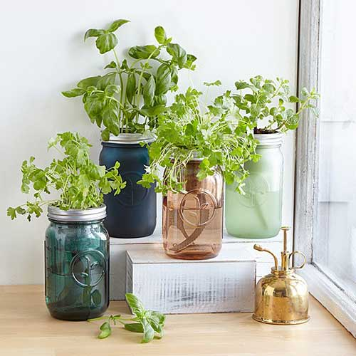 roommate-gift-idea-indoor-herb-garden