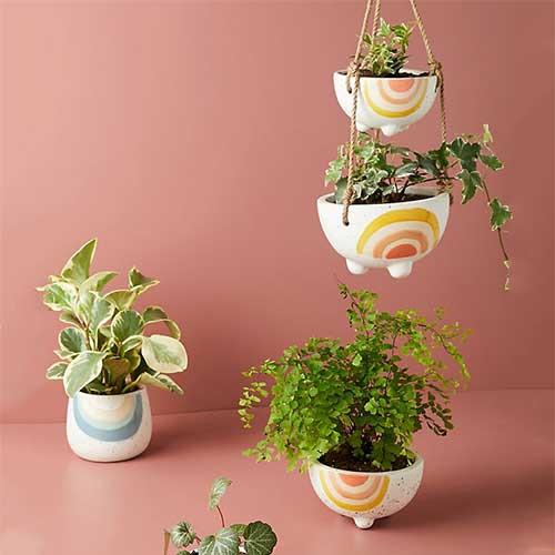 stocking-stuffers-planter