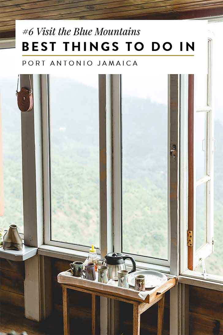 things to do in portland jamaica