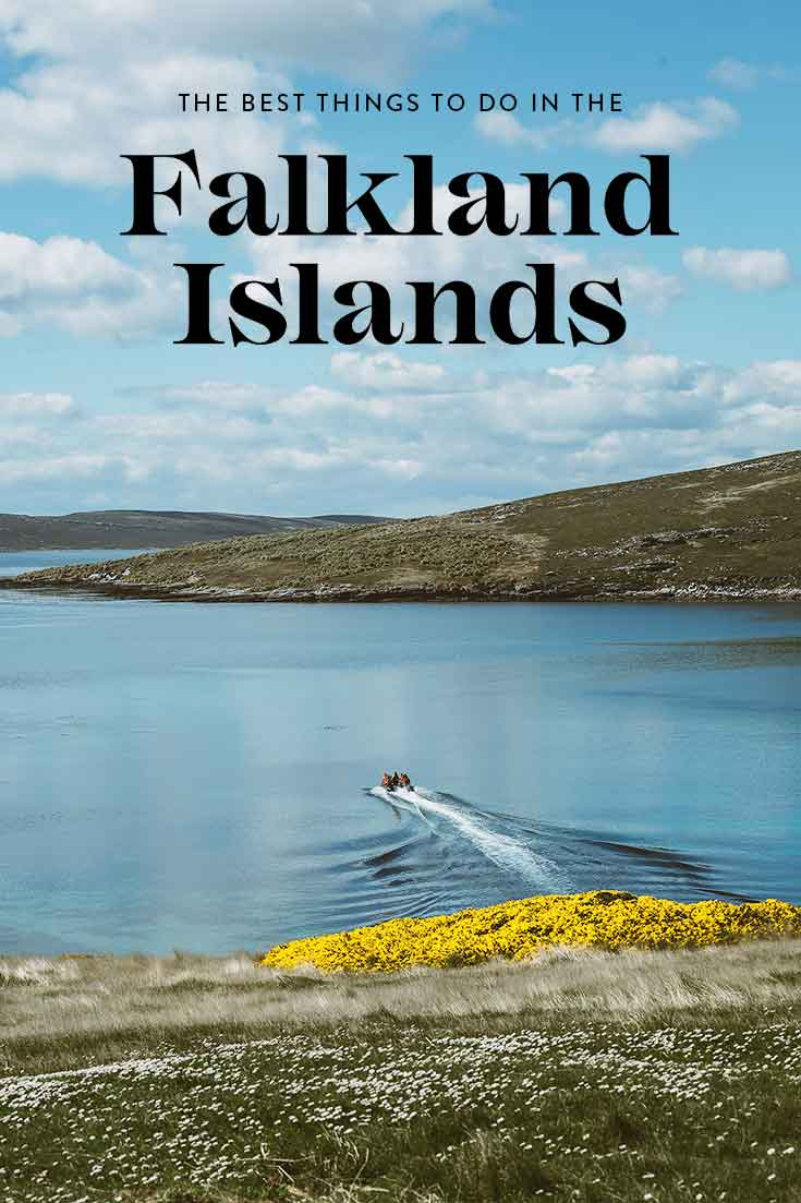 things-to-do-in-the-falkland-islands
