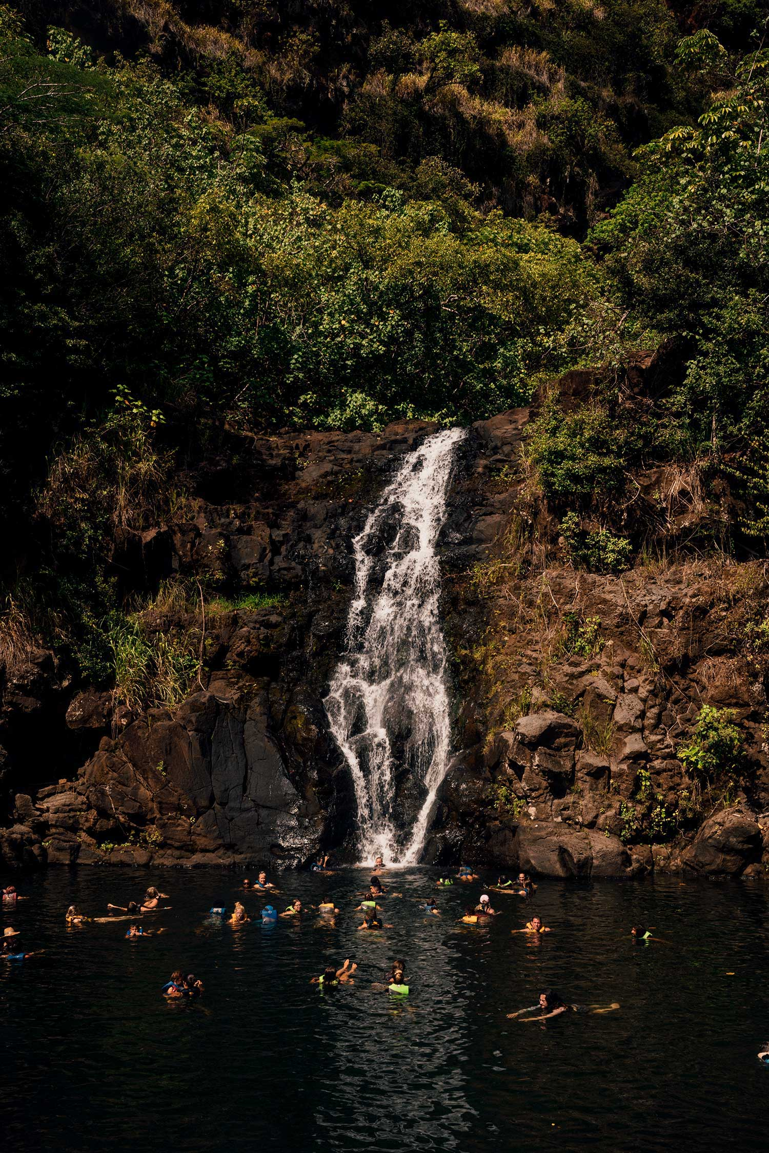 things-to-do-north-shore-waimea-waterfall